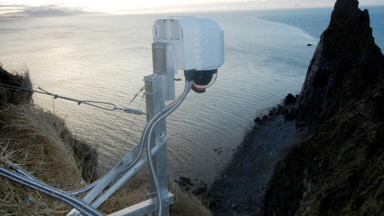 Netzferne Wildtier Beobachtungssysteme 4