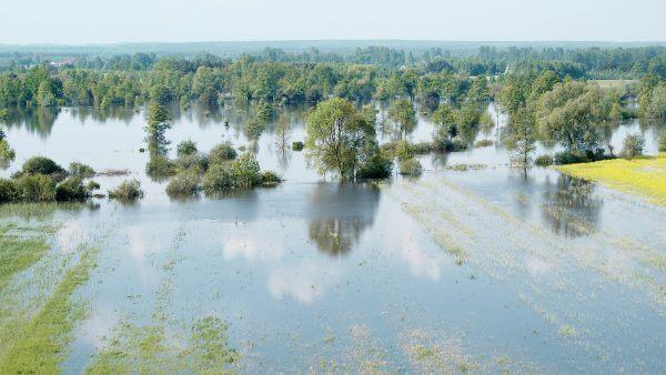 Umwelt Technologie Hochwasser Baeume Landschaft